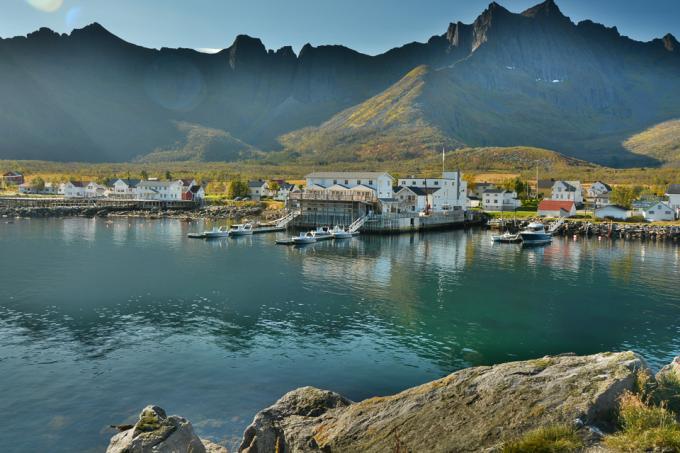 Senja/Mefjord